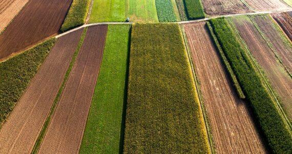 Põllumaastik